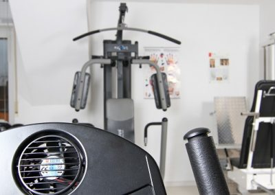 Fitness-MTT h